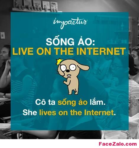 - Sống ảo: Love on the internet - Cô ta sống ảo lắm: She lives on the internet