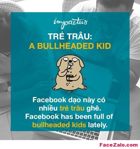 - Trẻ trâu: A bullheaded kid - Facebook dạo này có nhiều trẻ trâu quá: Facebook has been full of bullheaded kids lately